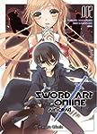 Sword Art Online Aincrad 2