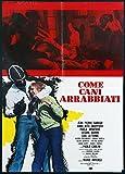 Come Cani Arrabbiati (DVD)