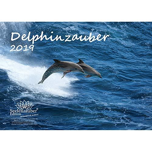 Delphinzauber · DIN A4 · Premium Kalender 2019 · Tauchen · Delphin · Delfin · Fische · Meer · Geschenk-Set mit 1 Grußkarte und 1 Weihnachtskarte · Edition Seelenzauber