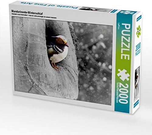 CALVENDO Puzzle Femmedarinente-Winterschlaf 2000 Teile Lege-Grösse 90 90 90 x 67 cm Foto-Puzzle Bild Von | Outlet  fe43f1