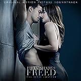 ΤΗΕ FINAL CHAPTER: FΙFΤΥ SΗΑDΕS FRΕΕD (CD Album)