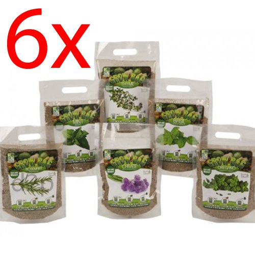 set-of-6-quick-grow-bags-herbs-with-magic-soil-planter-garden-decor-ingredients
