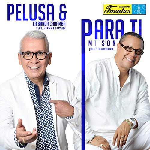 Para Ti Mi Son (Solfeo en Guagancó) - Pelusa Y La Banda Caramba