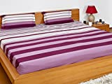 Solimo Silk Finish Spectra Stripe 180 TC...