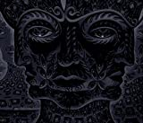 Tool: 10,000 Days (Audio CD)