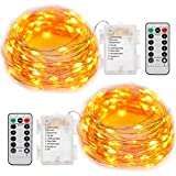 FairyDecor 2 Set String Lights Battery Operated with Remote, 8 modes Warm White Starry Fairy Copper Wire Batteries Powered String Light Waterproof 50 LED for Home Decoration, Holiday, Wedding, Party. (16.4ft )