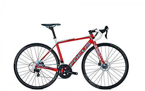 Rennrad Focus CAYO DISC DONNA 105 22G 28 Zoll , Rahmenhöhen:51, Farben:red/white/blue