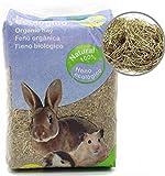 BPS Heno Natural Hierba Fresca para Mascotas Pequeñas 2 Modelo Elegir (Heno 1Kg) BPS-4054