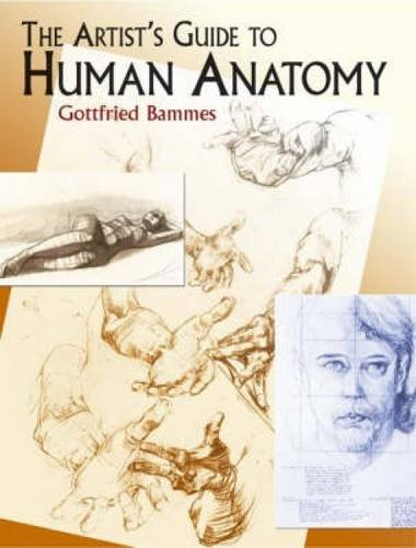 The Artist's Guide to Human Anatomy (Dover Anatomy for Artists)
