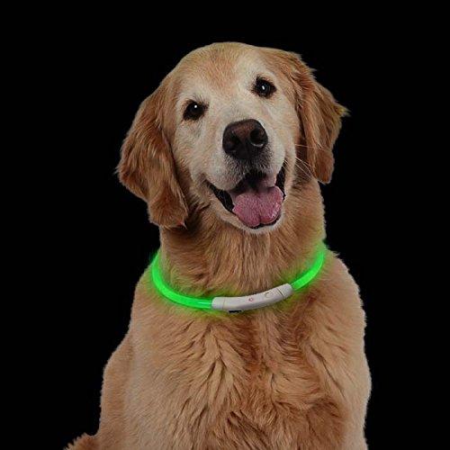 LED Hundehalsband Leuchtendes Halsbänder Nacht Hundeband Blinkende Sicherheit Hunde Halsband für Hund und Katzen (Aufladbare Led-hundehalsband Usb)