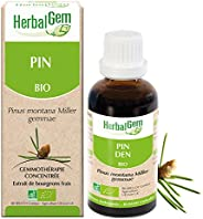 HerbalGem | Pin des Montagnes Bio|Macérats-Mères de Gemmothérapie Concentrée|30 ml