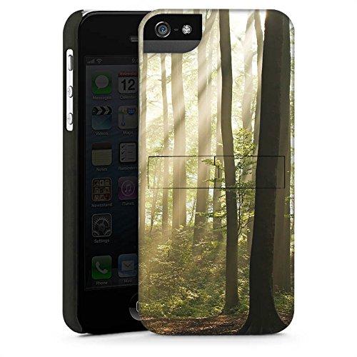 Apple iPhone 5s Housse Étui Protection Coque Forêt Clairière Rayons de soleil CasStandup blanc
