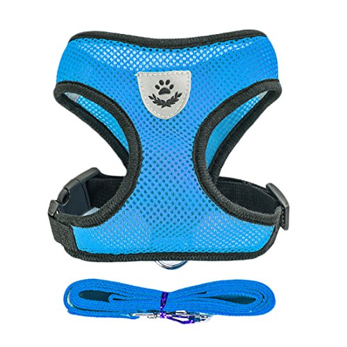 Air Mesh Hundegeschirr Atmungsaktiv Welpengeschirr für Klein Hunde Vest Harness Brustgeschirre Haustier Softgeschirr mit 1,1M Hundeleine Führleine Schleppleine (S, blau)