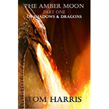 The Amber Moon Part One: Of Shadows & Dragons (Wings, Wands & Weird Worlds Book 3)