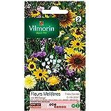Vilmorin - Sachet graines Fleurs Mellifères en mélange