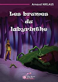 Les brumes du labyrinthe par Arnaud Niklaus