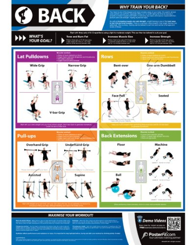Back Exercise Wall – Fitness Planners