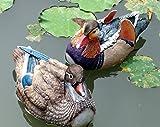 Y & M une paire de canard Mandarin extérieur Résine la simulation d'animaux Ornements, jardin, paysage Home décoratifs bricolage