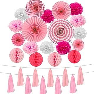 ANPHSIN 21 Stück Seidenpapier Pompoms, Papier Fans Fächer, Wabenbälle und Quaste Dekorpapier Kit für Geburtstag Hochzeit Baby Dusche Parteien Hauptdekorationen(Rosa)