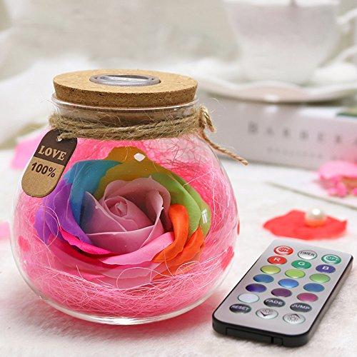 Kuulee Rose Licht Flasche Kreative Romantische dimmbare RGB LED Dimmer Licht mit Fernbedienung 16 Farben Dekoartikel Weihnachtsgeschenk für Damen, Mädchen, Tochter und Freundin, Rot Rosa Violett Blau Gelb