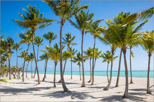 Posterlounge Holzbild 180 x 120 cm: Juanillo Beach, Cap Cana, Punta Cana, Dominican Republic, West Indies, Caribbean, Central America von Jane Sweeney/Robert Harding
