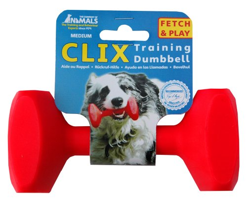 CLIX-Training-Dumbbell-Medium