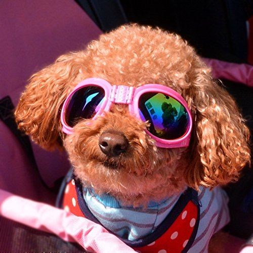 WMT Small Big Dog Grooming Glasses Anti-Sun Fashion Cool Pet Cats Sunglass Accessories for Puppy Animal Chihuahua Yorkshire Supplies