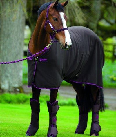 Horseware Amigo Jersey Cooler Abschwitzdecke Chocolate/Chocolate & Raspberry 145cm