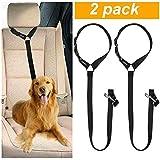 Best Dog Car Harnesses - CGBOOM 2 Pack Dog Car Seat Belt, Dual Review