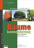 Bäume kennenlernen: Sachtext-Lesetraining: Steckbriefe der bekanntesten einheimischen Laub- und Nadelbäume - Karin Pfeiffer
