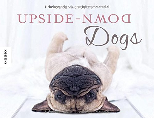 Upside-Down Dogs: Dackel Ralph und seine Freunde stehen Kopf (Shake, Dackel Ralph erklärt die Welt)