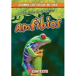 Los ciclos de vida de los anfibios / Amphibian Life Cycles (Veamos Los Ciclos De Vida/ a Look at Life Cycles)