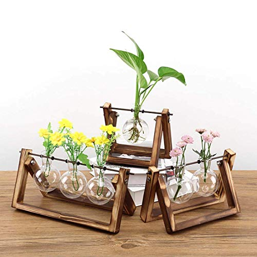 Waymore Desktop Glass Planter Bulb Vase with Retro Solid Wooden Stand and Metal Swivel Holder for Plants Home Garden Wedding Decor (3 Glass Vase)