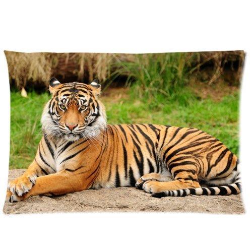 larrytoliver Sie verdienen zu haben mit Druck Satin Stoff 50,8x 76,2cm Kissenbezüge Tiger Best Kissen Fällen