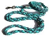 Viva Nature Handgemachtes Hunde-Halsband MIT Leine im Set/verstellbar 35-42 cm \ Paracord-PP-Flechtleine/Geflochten / Hund (Türkis 3i)