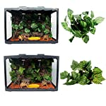 MagiDeal Reptile Vivarium Decoration Aquarium Ornament Artificial Grapes Ivy Vines 51W 2BwAIjBVL