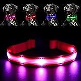 Pawow LED Leuchthalsband Hunde Leuchtend, Verstellbar USB Hunde Halsband Wiederaufladbar für Mittelgroße Grosse Hunde (Klein, Rosa)