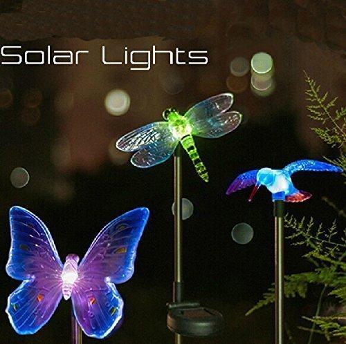 Banwen a energia solare, motivo: colibrì, Butterfly