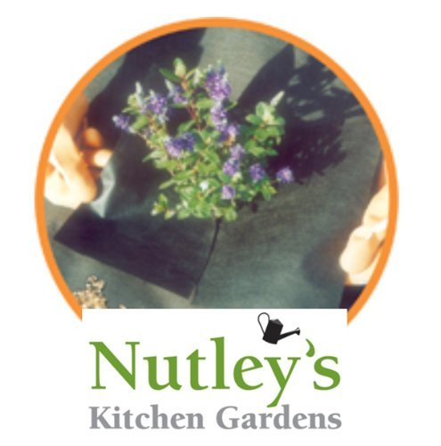 nutleys-10-x-2-m-weedban-70-weed-control-fabric-black
