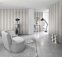Silver and Off White Wide Stripe Wallpaper 286632 Rasch by Rasch from Rasch