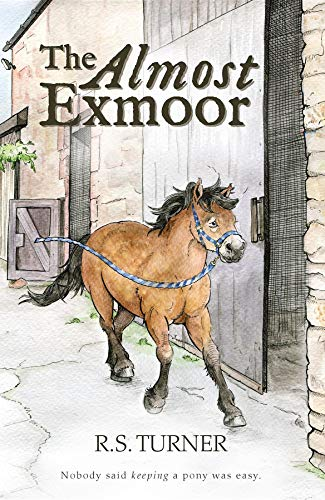 The Almost Exmoor (English Edition)