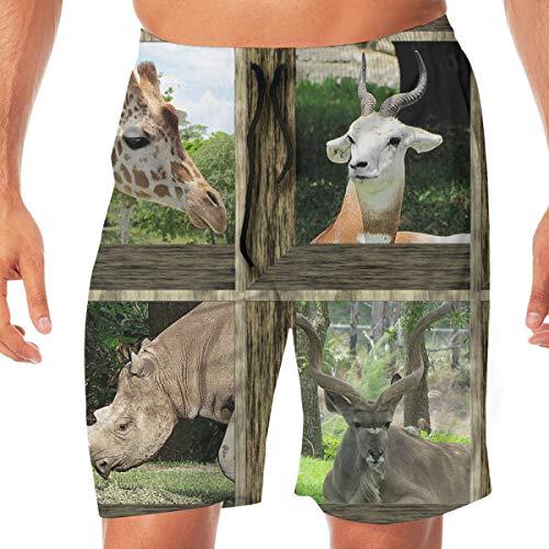 atopking Attic Windows at The Zoo 2_5843 3D-Bedruckte Badehose für Herren Quick Dry Summer Beach Sports Running Shorts (Attic Windows)