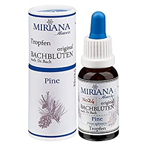 MirianaFlowers Pine 20ml Bachblüten Stockbottle