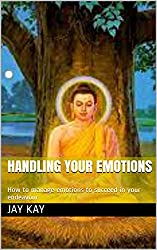 Handling your emotions: How to manage emotions to succeed in your endeavour (English Edition)