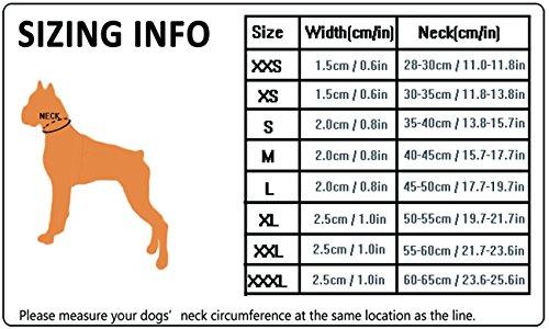 Truelove-Dog-Training-Collar-TLC5011-Reflective-Premium-Duraflex-Buckle-Nylon-Webbing-Pet-Dog-CollarsHigh-Grade-Nylon-Webbing-No-Choke-Basic-Collars-Now-Available-S-Neon-Yellow