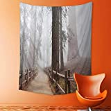 daawqee Elastic Fabric Tapestry Evergreen Forest and Walkway in Sequoia National Park Foggy Morning Nature Art Grey 150x200 cm Unique Home Decor