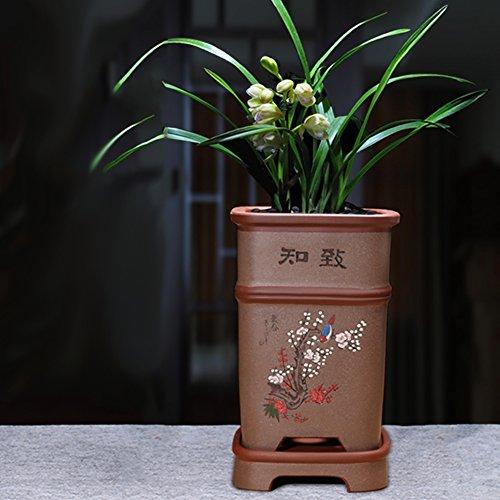 Nclon Revêtement céramique Pot de fleur,Les orchidées Clivia Chlorophytum Pot de fleur Personnalité Plateau Avec Jardin Outils-A