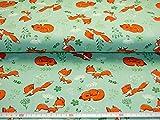 Baumwolljersey, Jersey Stoff mit Fuchs Motiven, Kinderstoffe, Hollandstoffe, der Preis ist für 25 cm Länge Meterware. 12,00 Euro/Meter