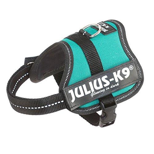 Julius-K9, 162PG-BB2, K9-Powergeschirr, Größe: Baby 2, petrol grün