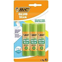 BIC Ecolutions – Colla stick da 8g Confezione da 2